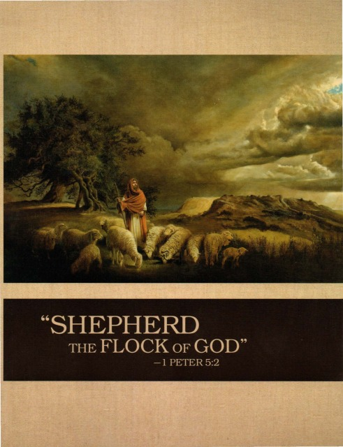 Shepherd the Flock of God Cover